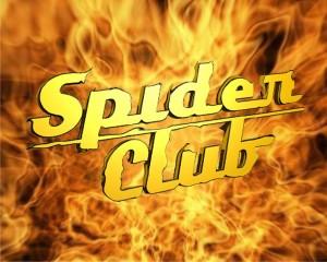 spider_logo